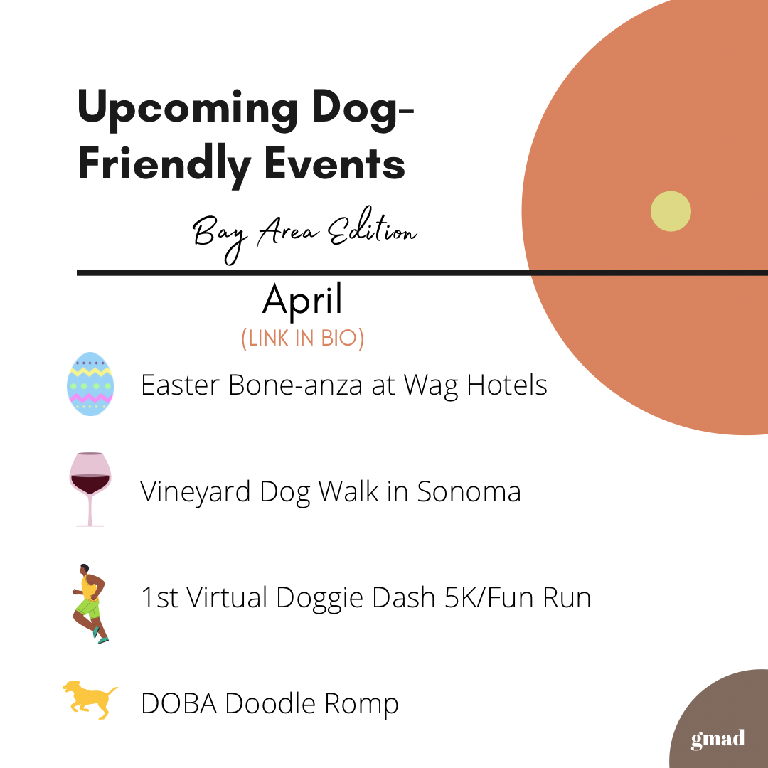 Upcoming dog-friendly events in the Bay Area for April 2021