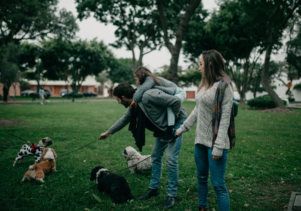 Upcoming dog-friendly events in the Bay Area for March 2021!