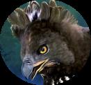 Untamed - Crowned Eagle
