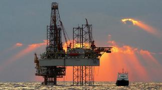 Oil price rally stalls on large crude build