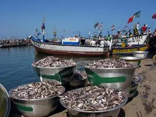 Fisheries Commission condemns illegal fishing methods in Central Region