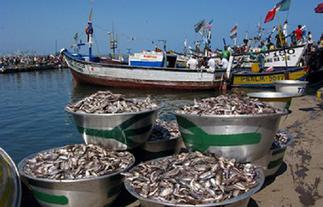 Fisheries ministry, Commission announce 2021 closed season