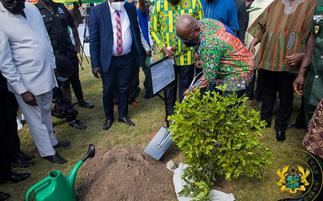Green Ghana Day initiative won't be a one-off event