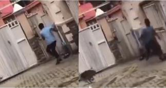 Moment boy being chased by a dog jumped over a high fence without touching it » GhBasecom™