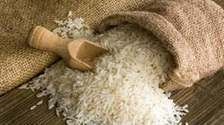 Rice growers appeal to government