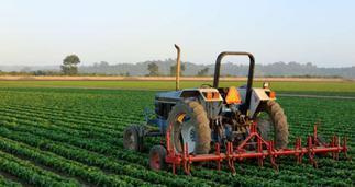 Coronavirus: 78,413 agribusinesses workers lost jobs after lockdown period