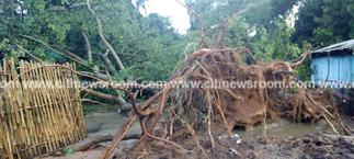 Rains cause havoc at Tafi Atome Monkey Sanctuary