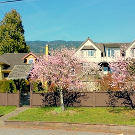 Homestay in West Vancouver(British Columbia)