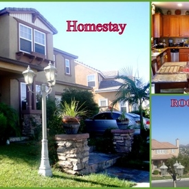 Homestay in San Diego(California)