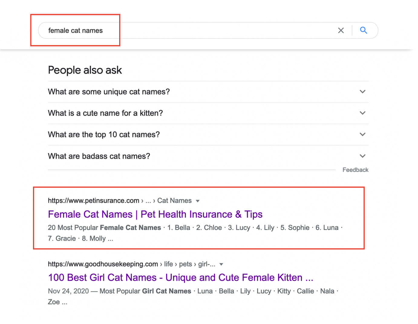 Search results for female cat names used as an example of digital content marketing
