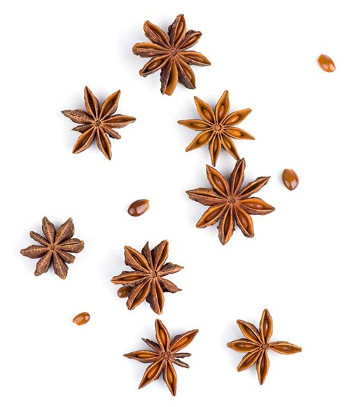 Spices star anise