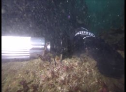 משחזת זווית תת-מימית