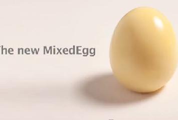 מערבב ביצים