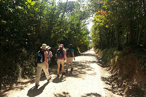 guided-tour-via-francigena-italy-francigenaways
