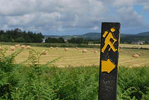 walking-trail-marking-ireland-ways
