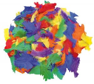 Federn verschiedene Farben 100 gr