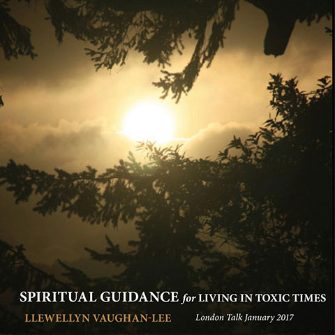 Spiritual Guidance for Living in Toxic Times