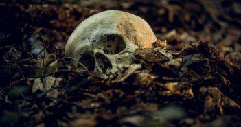 台中一名男子去墳墓挖死人頭骨丟在陌生人車頂上。(圖/示意圖/取自Pixabay)