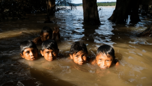 Image for This huge Amazon dam was just stalled – but now we need to stop it.
