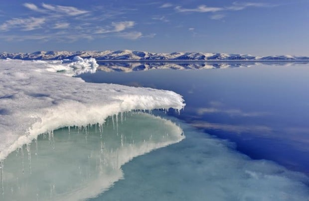 Image for Your voice will reach the Arctic