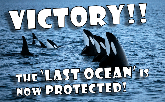 Image for VICTORY! Massive new Ocean Sanctuary established off Antarctica!