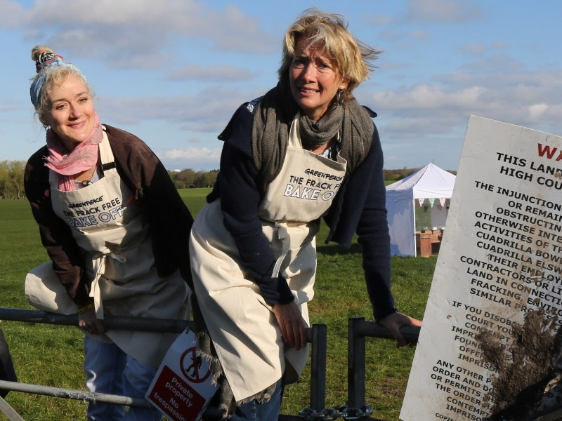 Image for Lights, camera, direct action: 6 times Emma Thompson spoke up for the planet