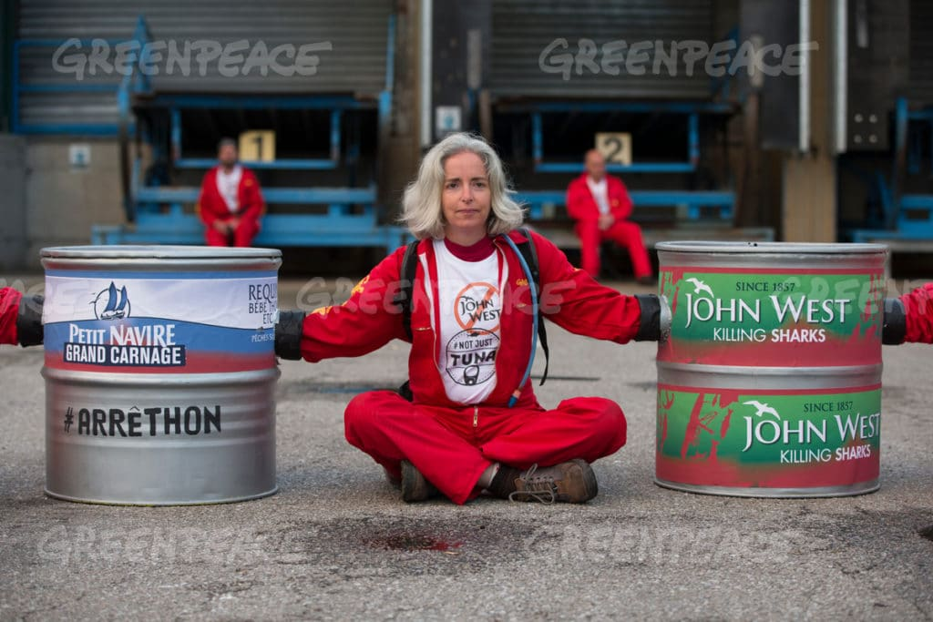 Image for Greenpeace volunteers confront destructive fishing