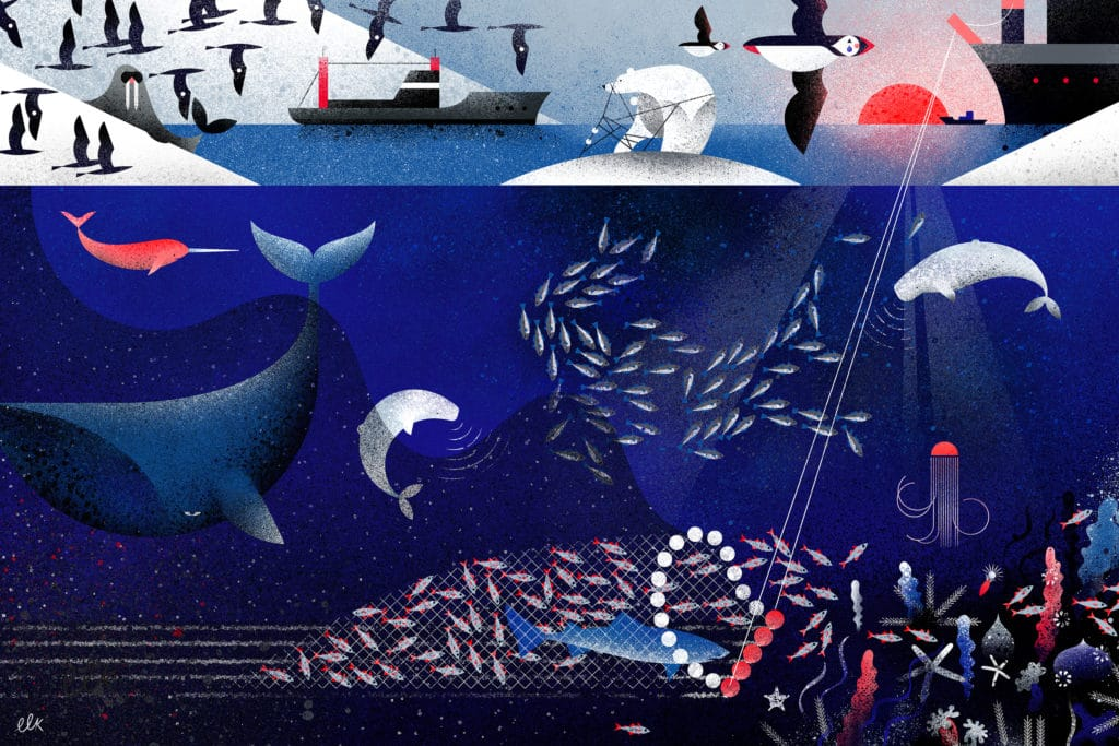 Image for 5 Lesser-Known Threats to the Fragile Arctic Ocean
