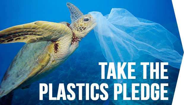 Image for 6 amazing plastic bans from around the world