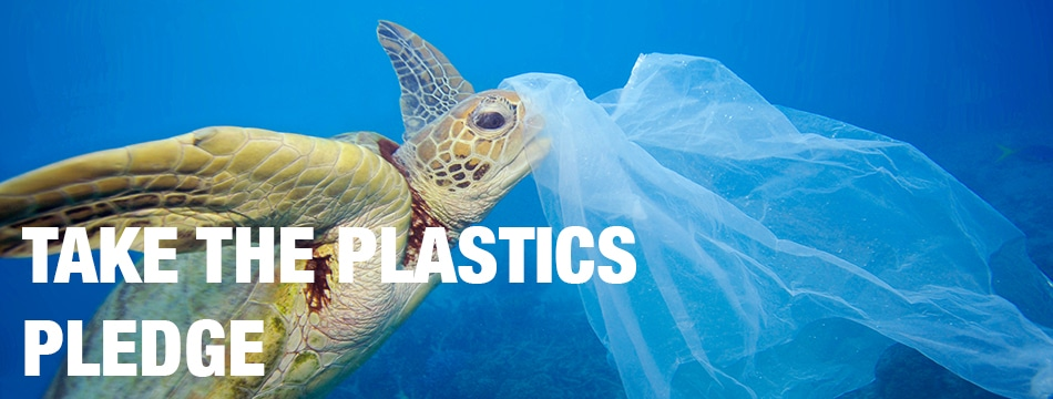 Image for Plastics