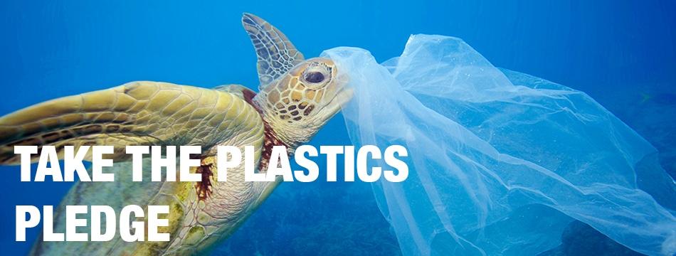 Image for Plastics