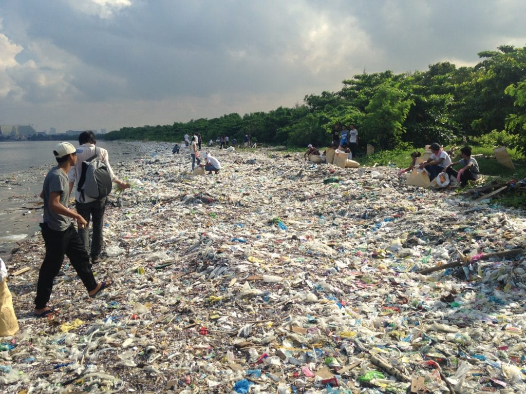 Image for A joint mission: ending plastic pollution
