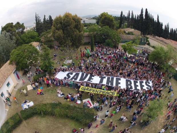 Greenpeace Greece bee festival participants with Save the Bees banner