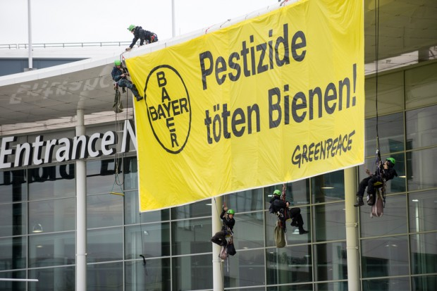 Greenpeace activists protest against bee-killing pesticides with a large banner displayed from the roof of the Cologne Fair building