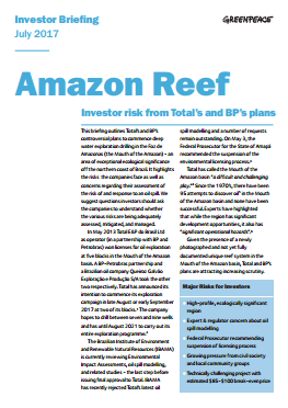 Image for Amazon Reef: Investor risk from Total's and BP's plans