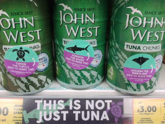 Image for Fighting for sustainable tuna fishing practices