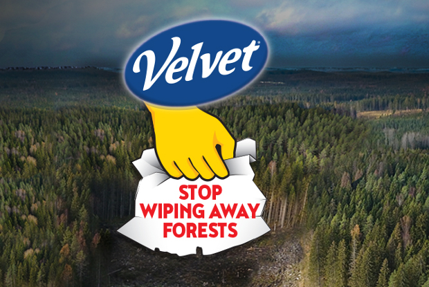 Image for Tell Velvet to Stop Wiping Away the Great Northern Forest