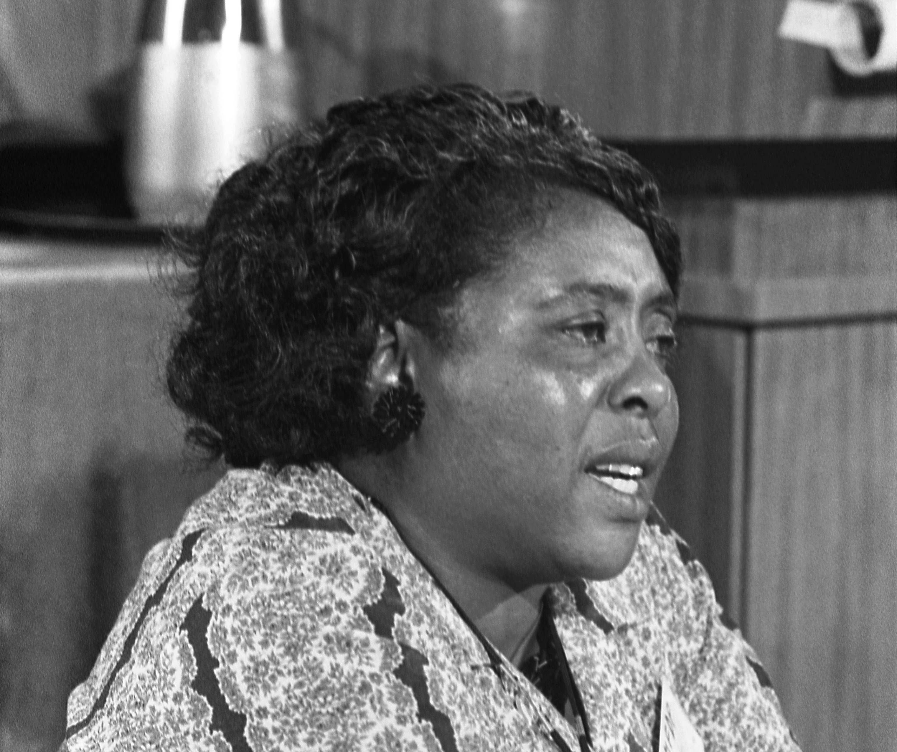 Image for Black History Month: How Fannie Lou Hamer inspires the modern climate movement