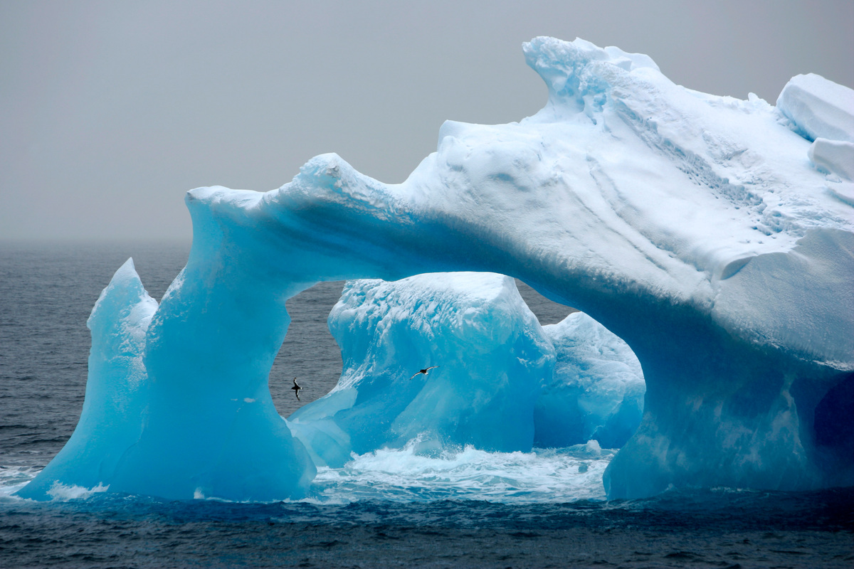 Image for Setting Sail to protect the Antarctic