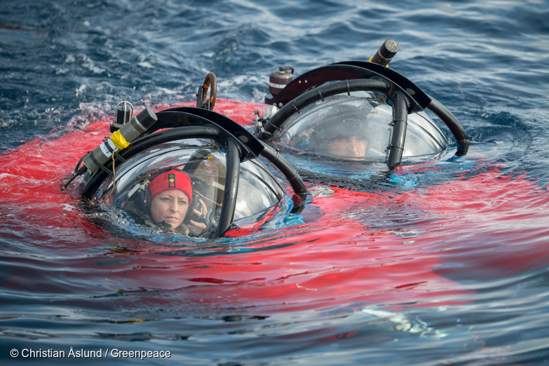 Image for Diving to the Antarctic seafloor is a scientist's dream coming true