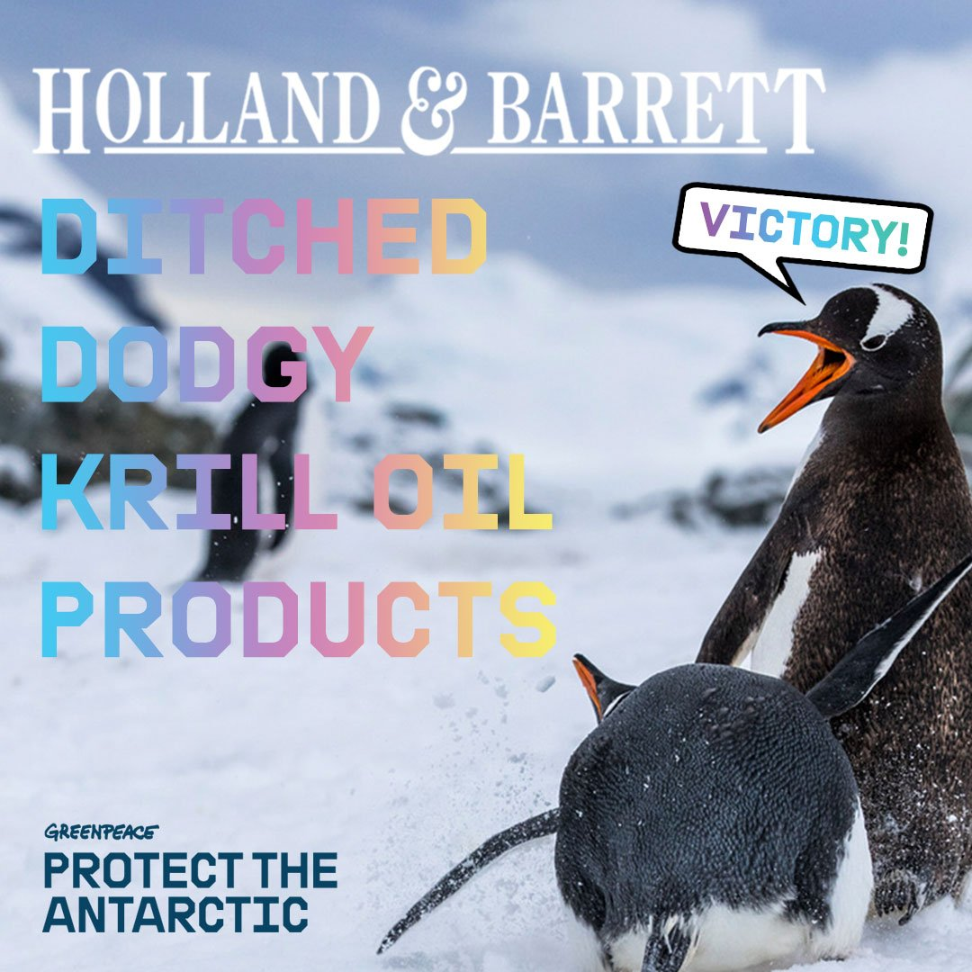 Image for VICTORY! Holland & Barrett ditch krill oil to protect the Antarctic