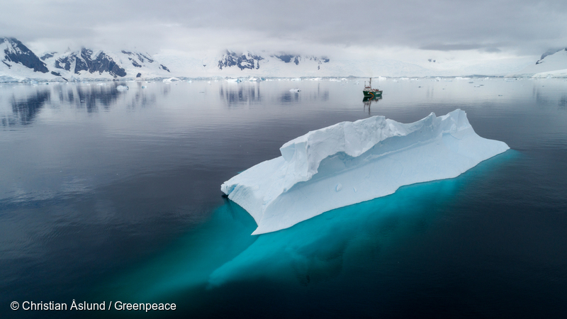 Image for Plastic pollution reaches the Antarctic