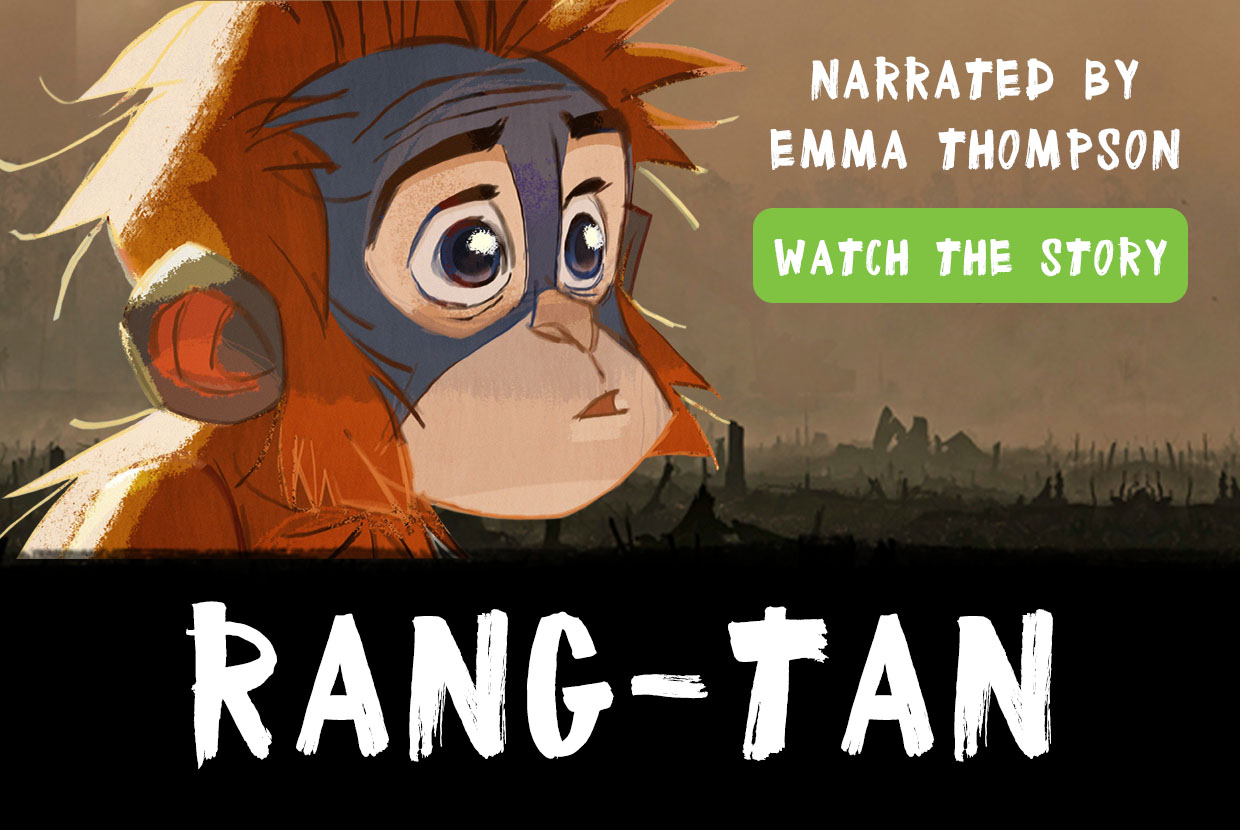 Image for Save Rang-tan. End dirty palm oil.