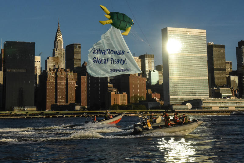 Greenpeace activists fly a giant turtle kite outside the United Nations headquarters in New York as countries gathered to begin negotiations, for the first time in history, towards a treaty covering all oceans outside of national borders.
