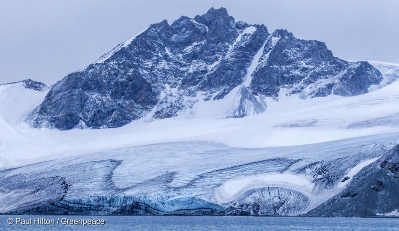 What does climate change mean for the Antarctic? | Greenpeace UK