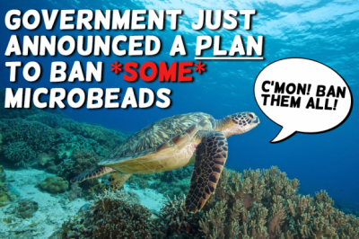See turtle with microbeads campaign slogans