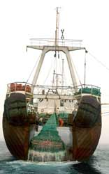 Portugese bottom trawler fishing off the Grand Banks, Canada, 2005