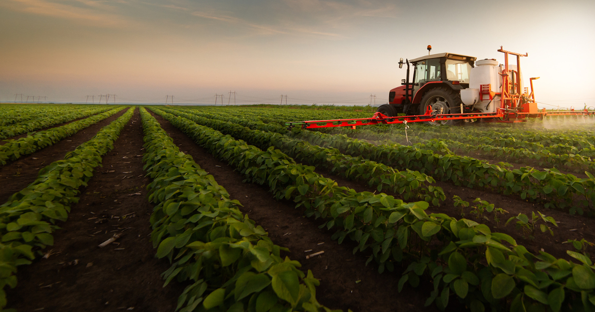 Alternatives to Nitrates: Is There a Better Way?