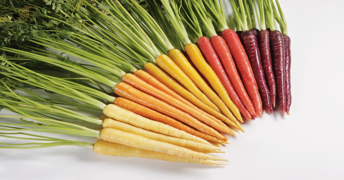 BASF Colored Carrots