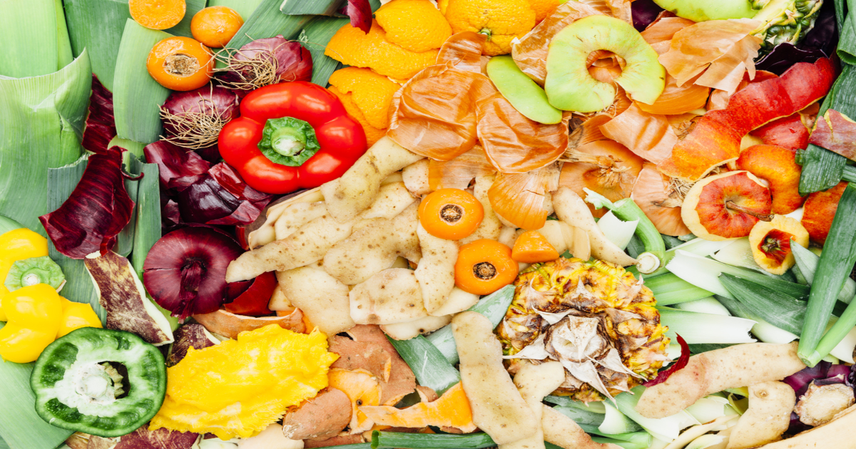 Food Waste Reduction at the Source: New Approaches to Sustainability